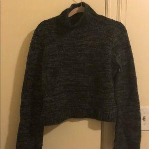 Cropped Zara turtleneck sweater.